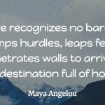 Maya Angelou - Love recognizes no barriers - love quote